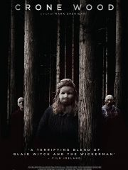 Crone Wood Found Footage Film DVD Poster